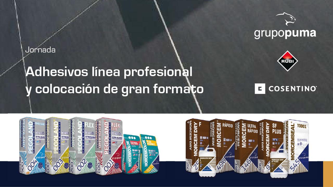 Jornada Grupo Puma sobre 'Adhesivos línea profesional y colocación de gran formato'